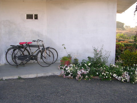 Bikes at a cottage